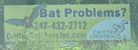 Bat removal billboard